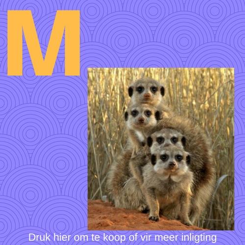 Die letter M